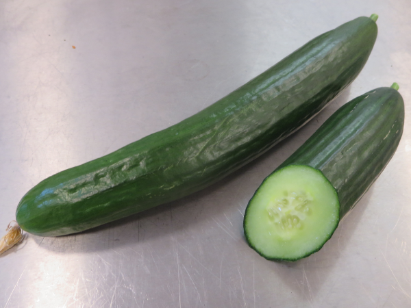 Schlangengurke / Salatgurke