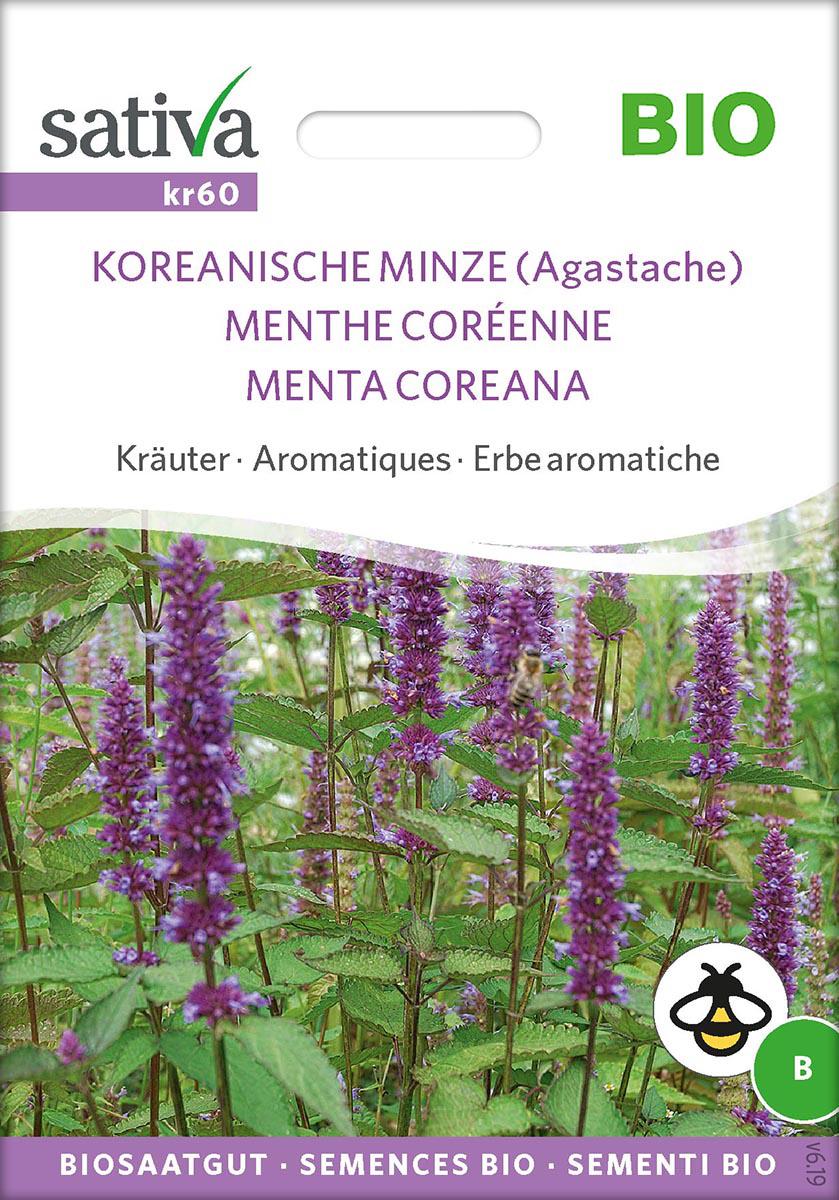 Saatgut Koreanische Minze -S-