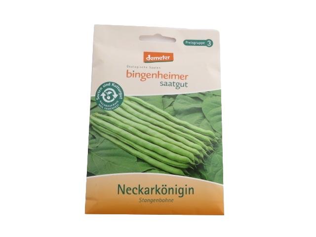 Saatgut Stangenbohne Neckarkönigin -B-