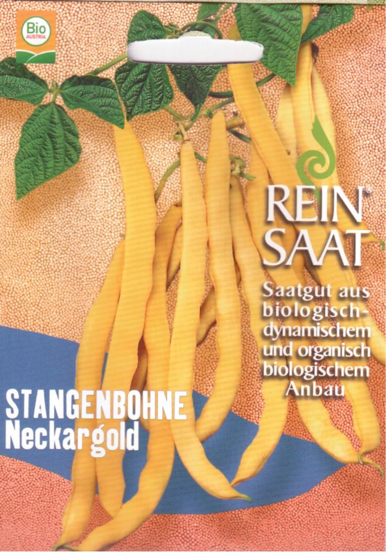 Saatgut Stangenbohne Neckargold -R-