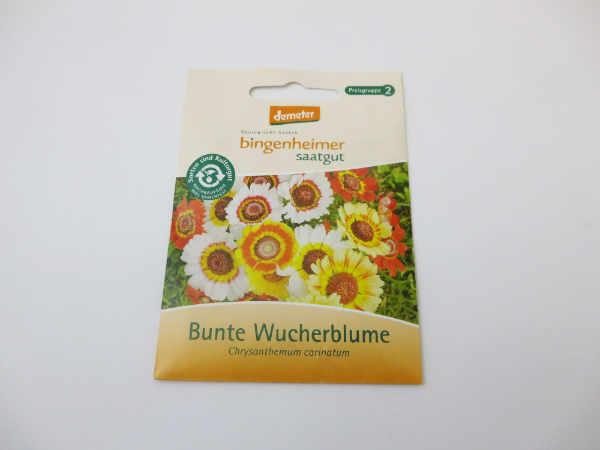 Saatgut Bunte Wucherblume