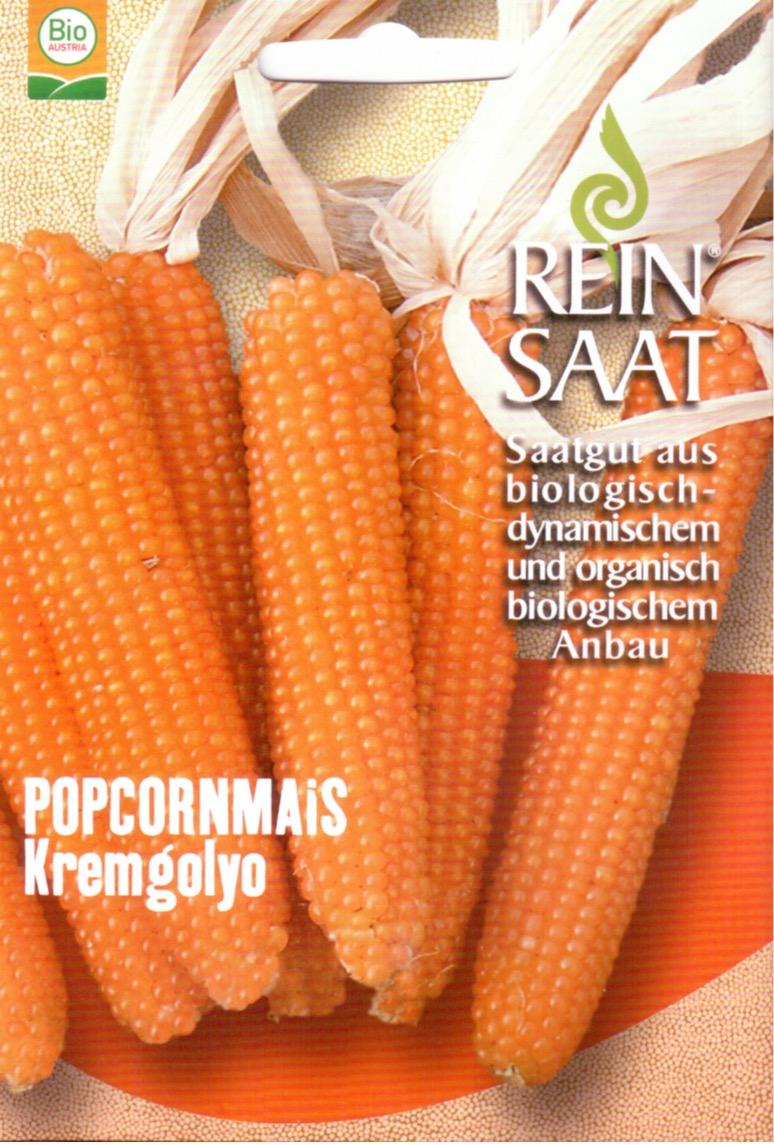 Saatgut Popkornmais -R-
