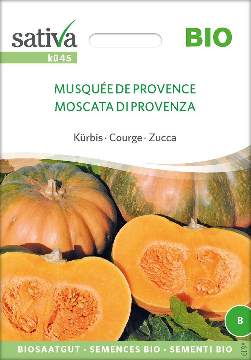 Saatgut Kürbis Muskat de Provence