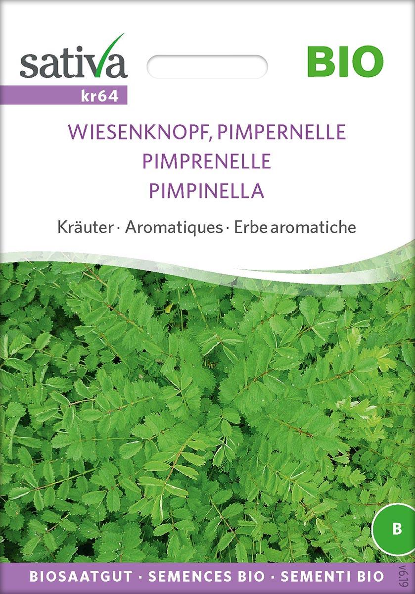 Saatgut Pimpernelle