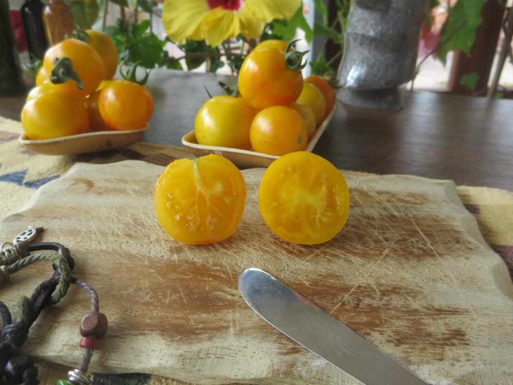 Tomatensaatgut Topaz