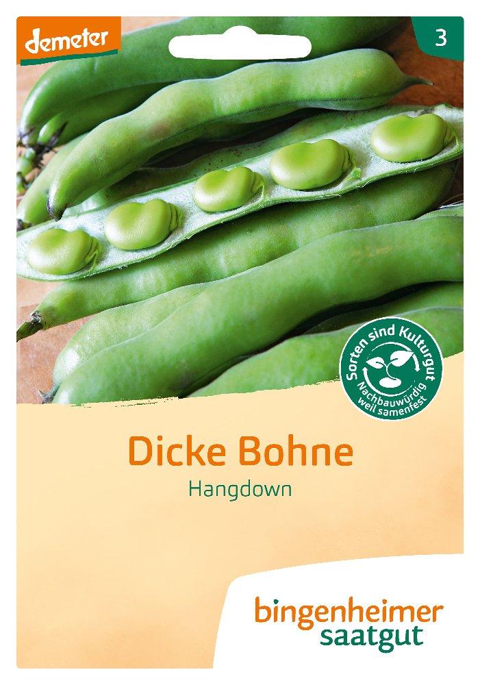 Saatgut Dicke Bohne Hangdown -B-