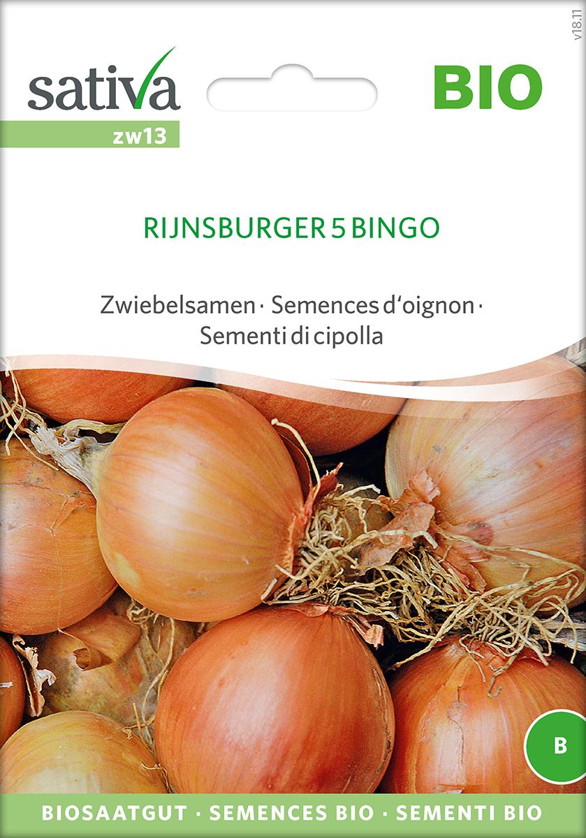 Saatgut Zwiebel Rundsburger 5 Bingo -S-