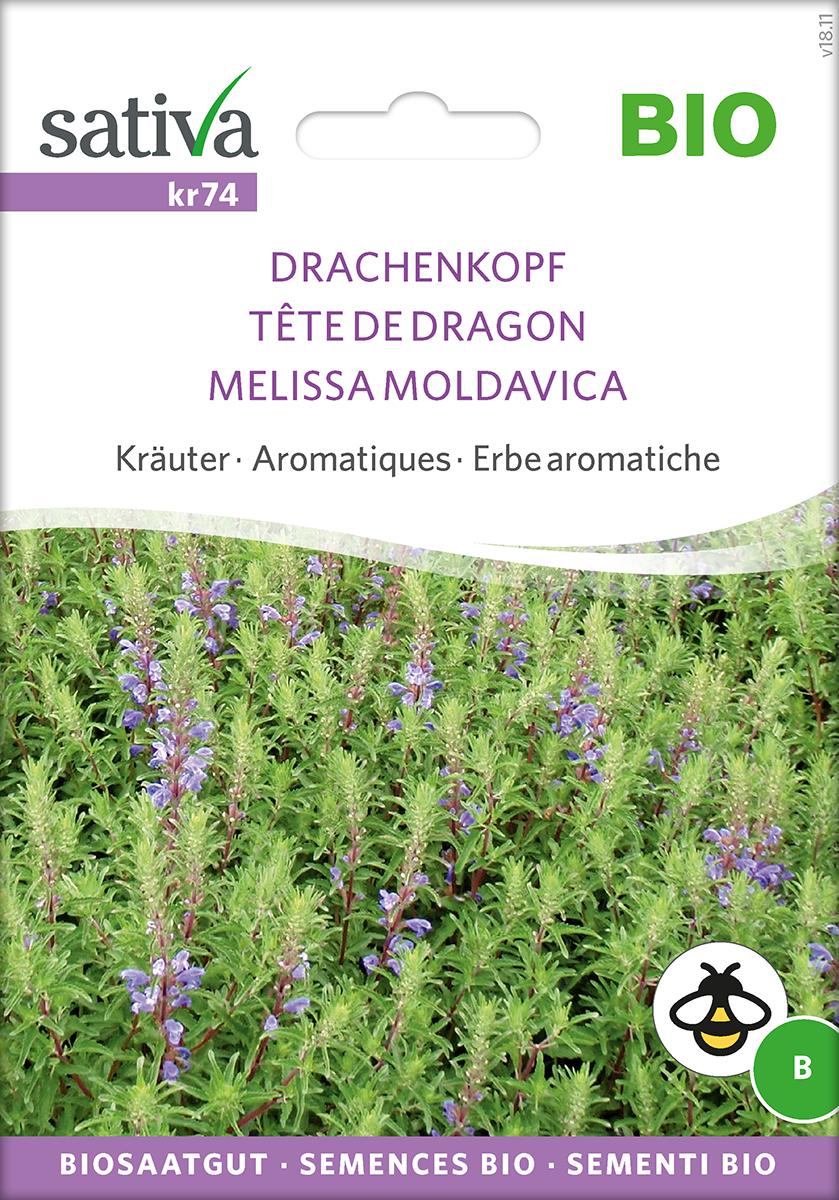 Saatgut Drachenkopf -S-