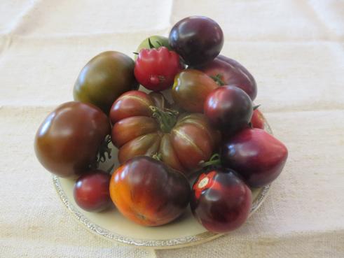 Tomatenmix Schwarz