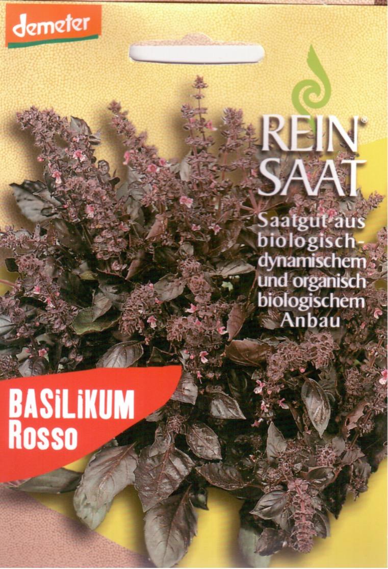 Saatgut Basilikum Rosso