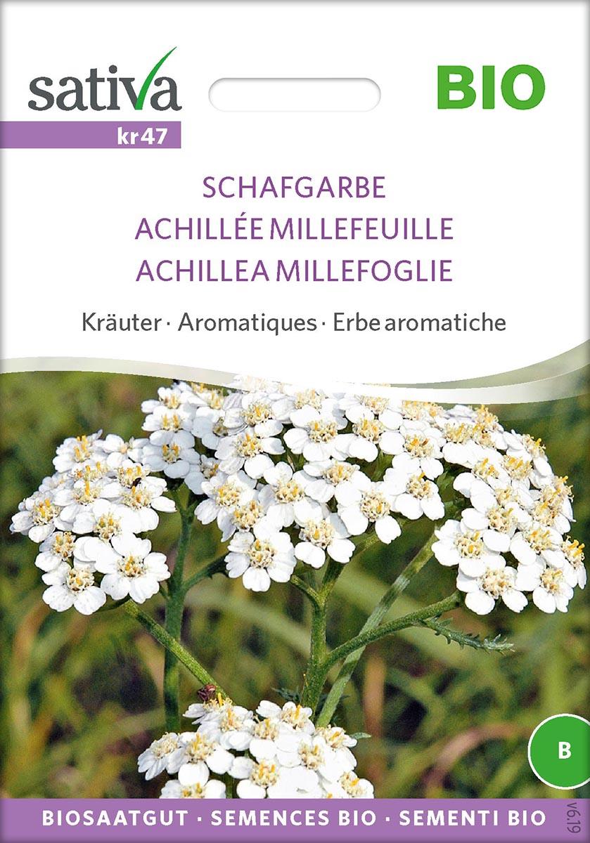 Saatgut Schafgarbe