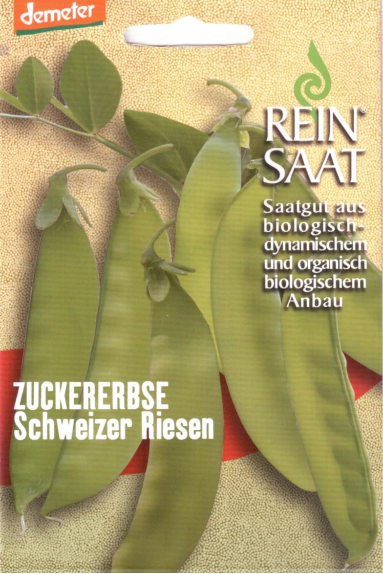 Saatgut Zuckererbse Schweizer Riesen -R-