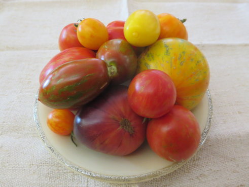 Tomatenmix Gestreift & Geflammt