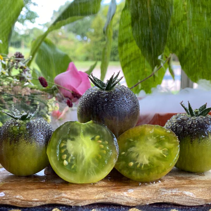 Grün und Blaue leckere Tomatenfrucht