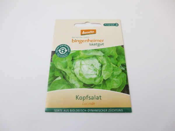 Saatgut Kopfsalat Lucinde -B-