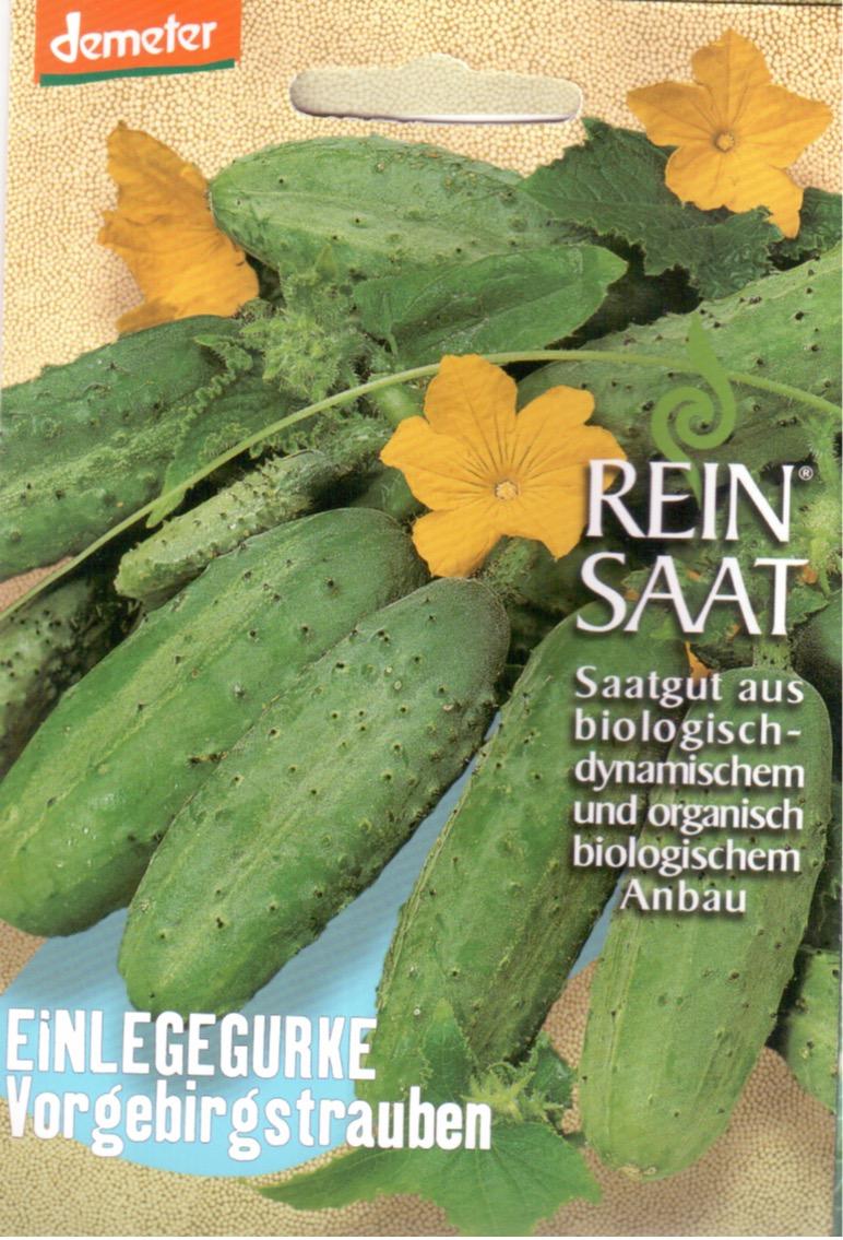 Saatgut Einlegegurke Vorgebirgstrauben -R-