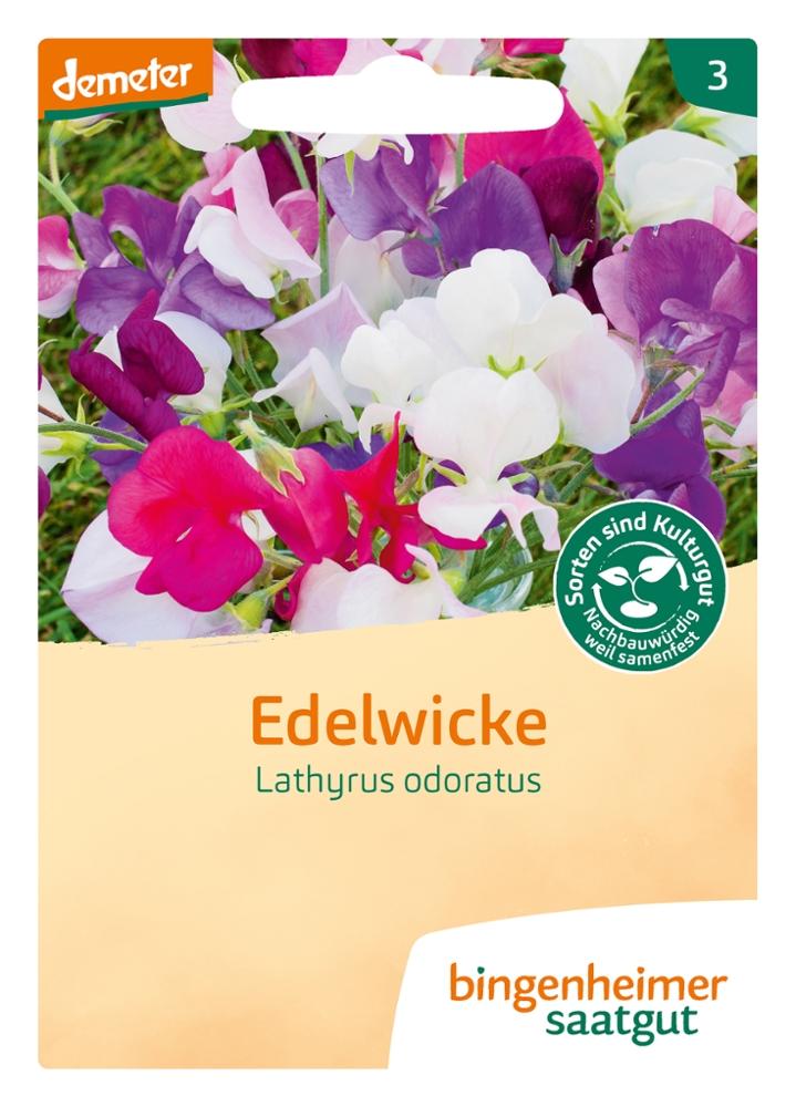 Saatgut Edelwicke -B-
