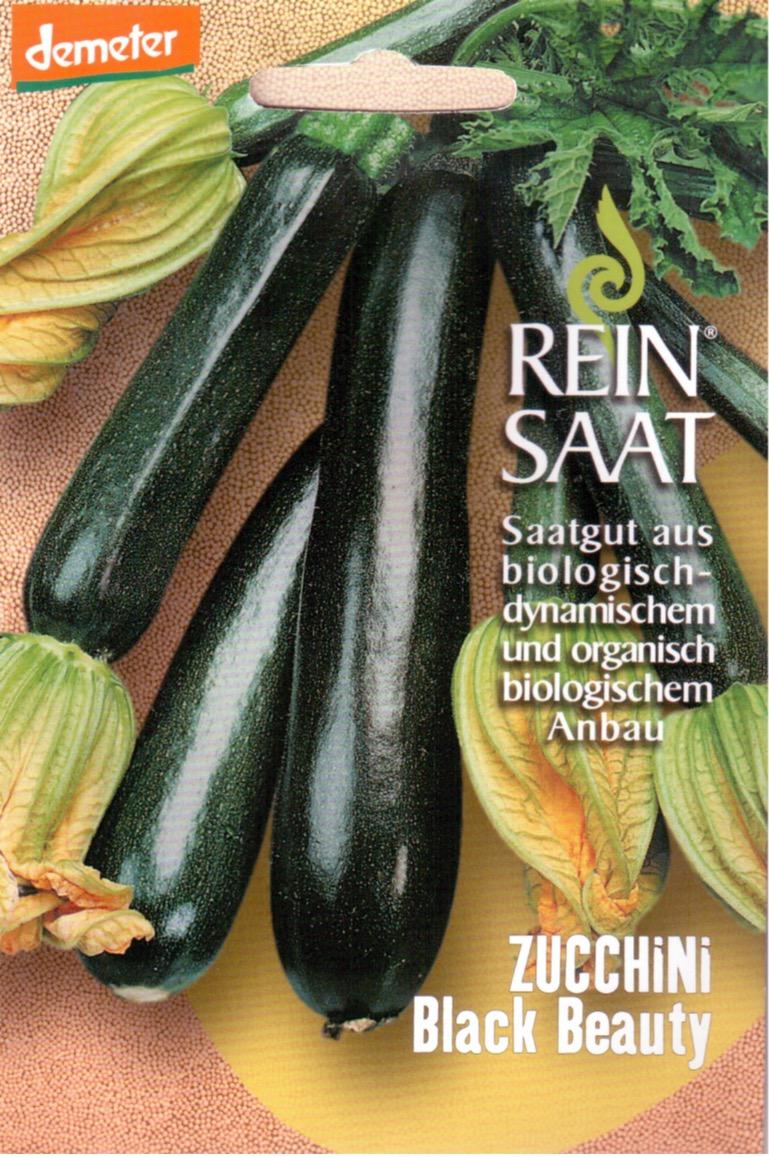 Saatgut Zucchini Black Beauty -R-