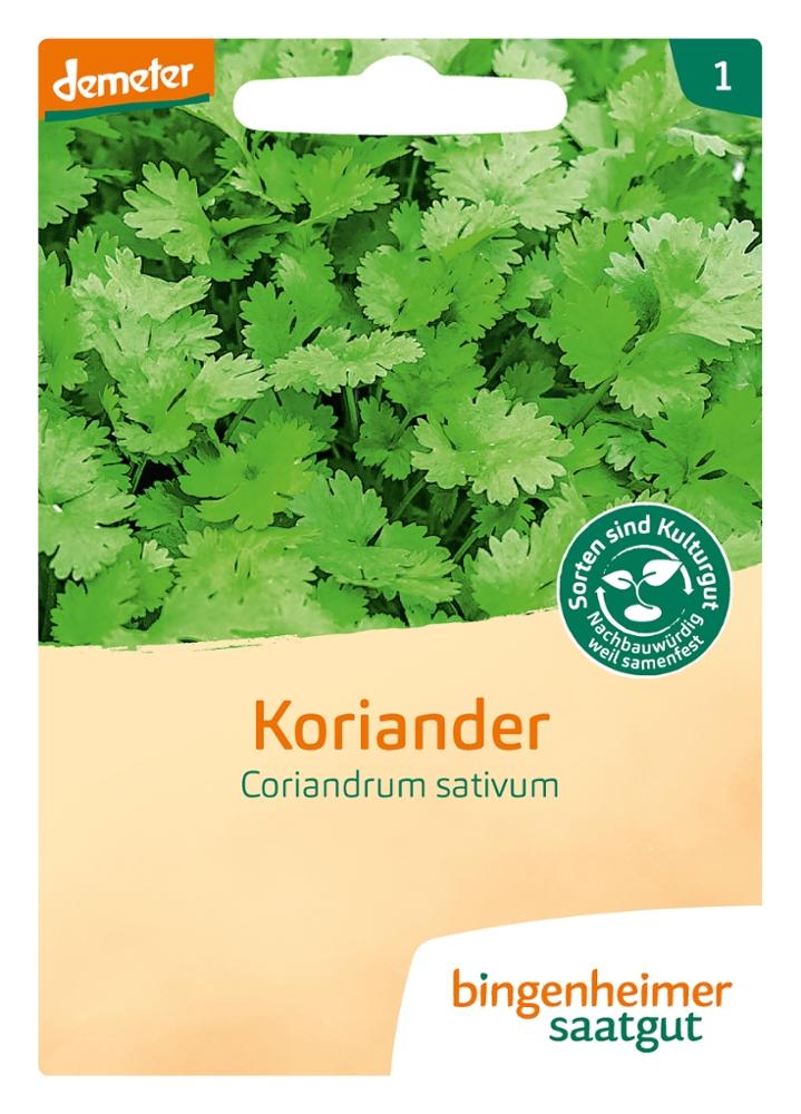 Saatgut Koriander -B-