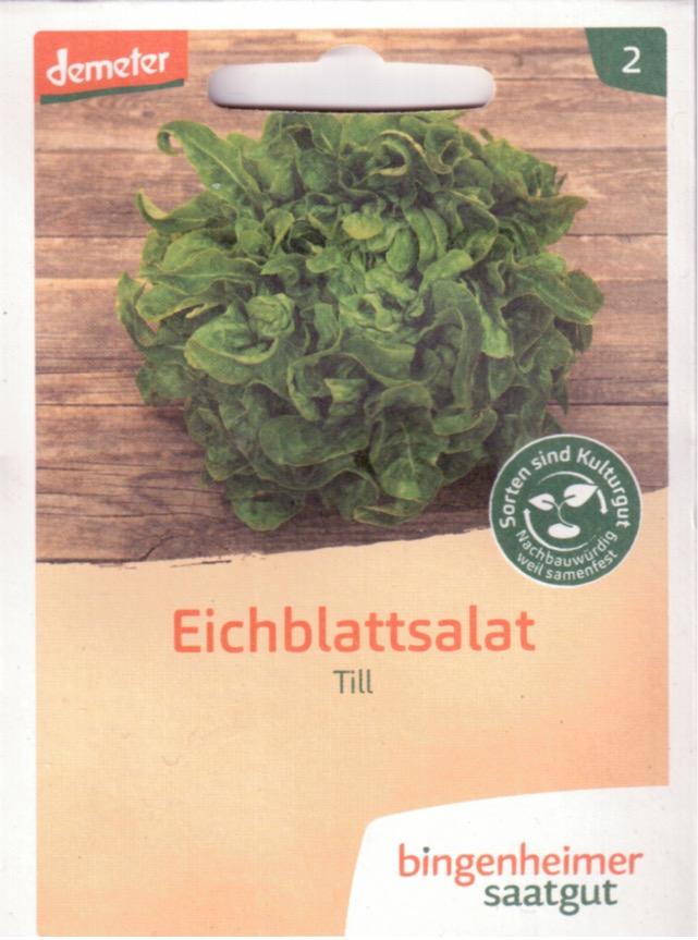 Saatgut Eichblattsalat Till -B-