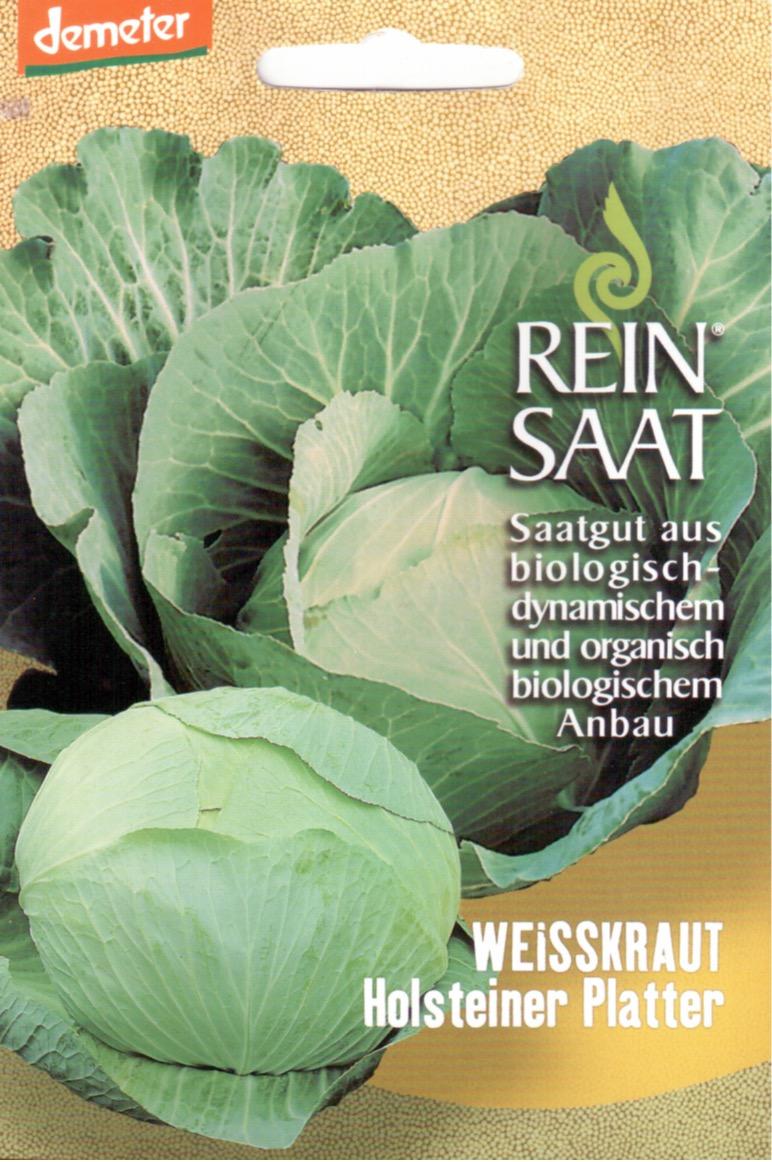 Saatgut Weisskohl Holsteiner Platter