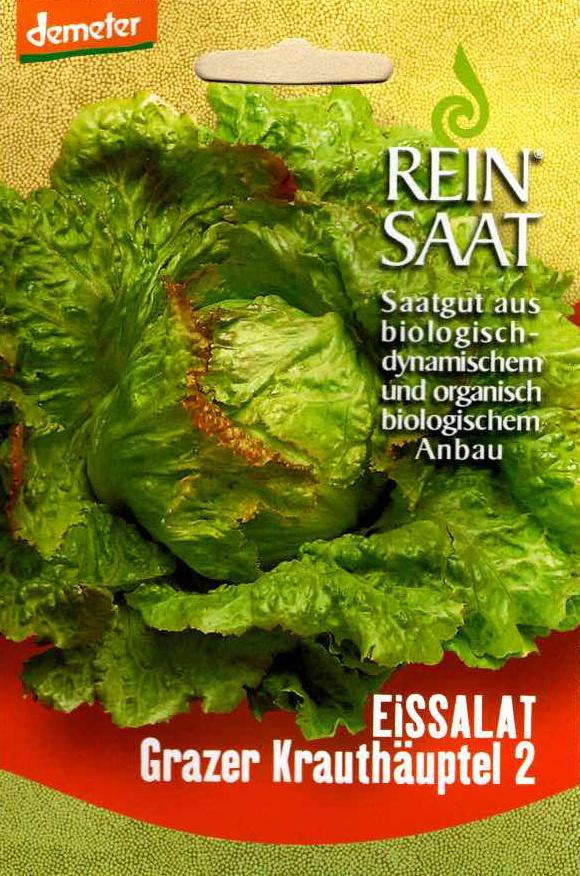 Saatgut Eissalat Grazer Kräuterhäuptel -R-