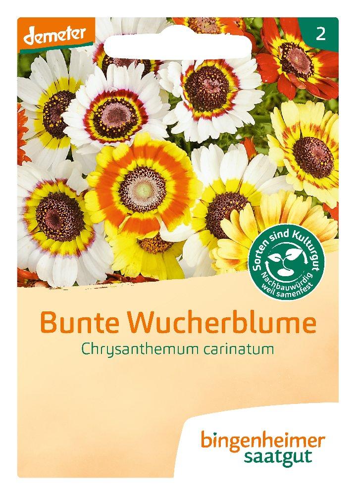 Saatgut Bunte Wucherblume -B-