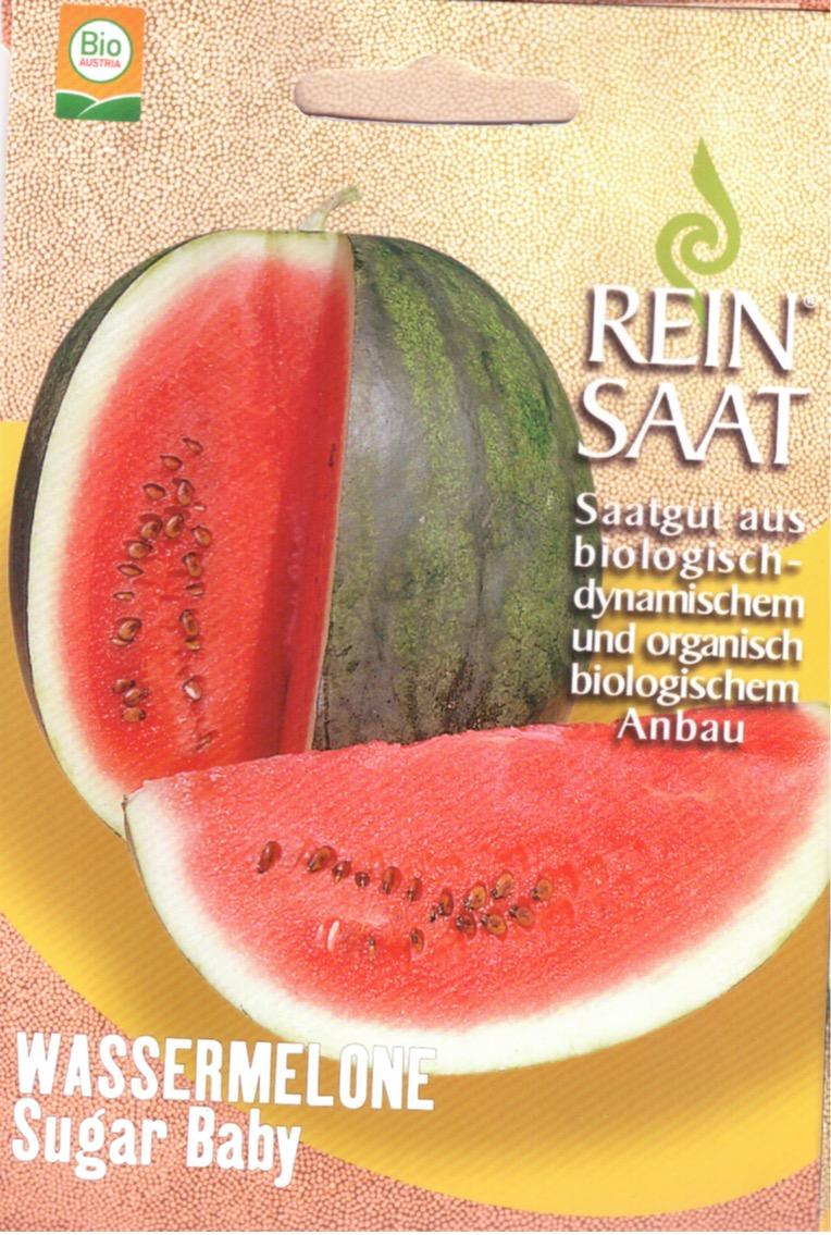 Saatgut Wassermelone Sugar Baby -R-