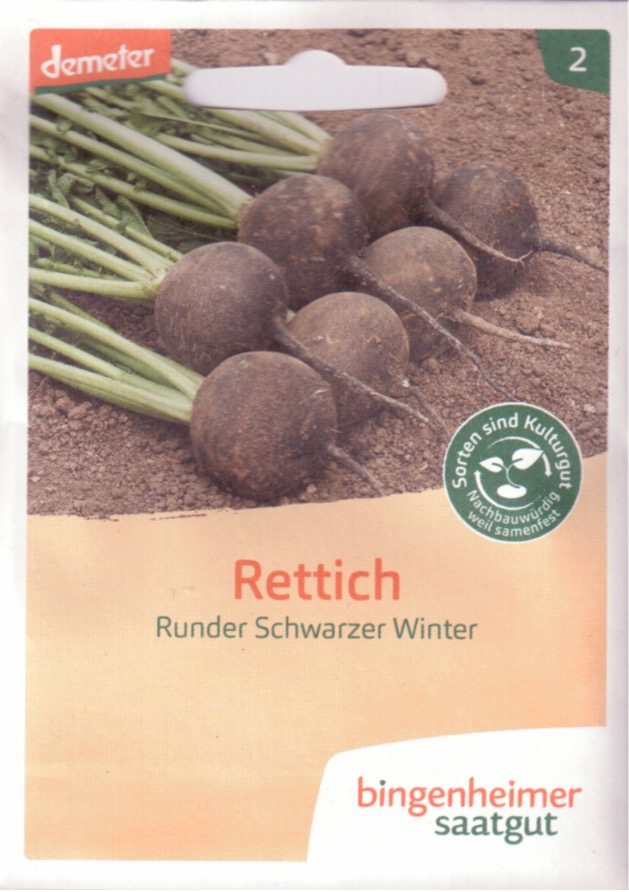 Rettich Runder Schwarzer Winter