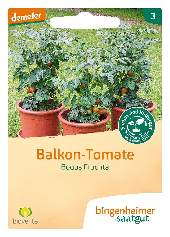 Tomatensaatgut Bogus Fruchta -B-