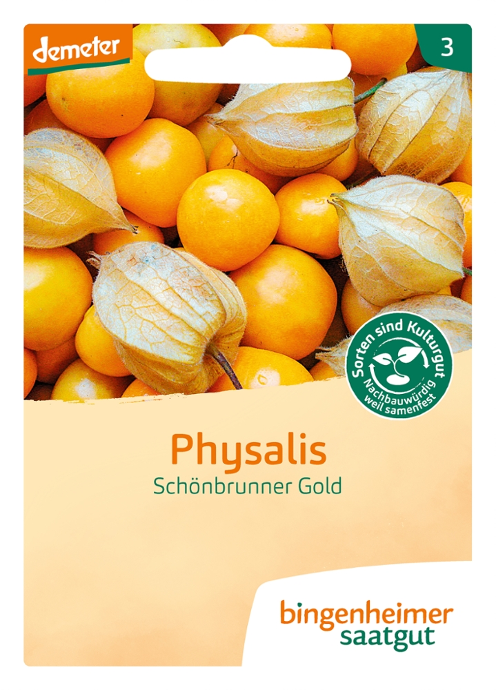 Saatgut Physalis Schönbrunner Gold -B-