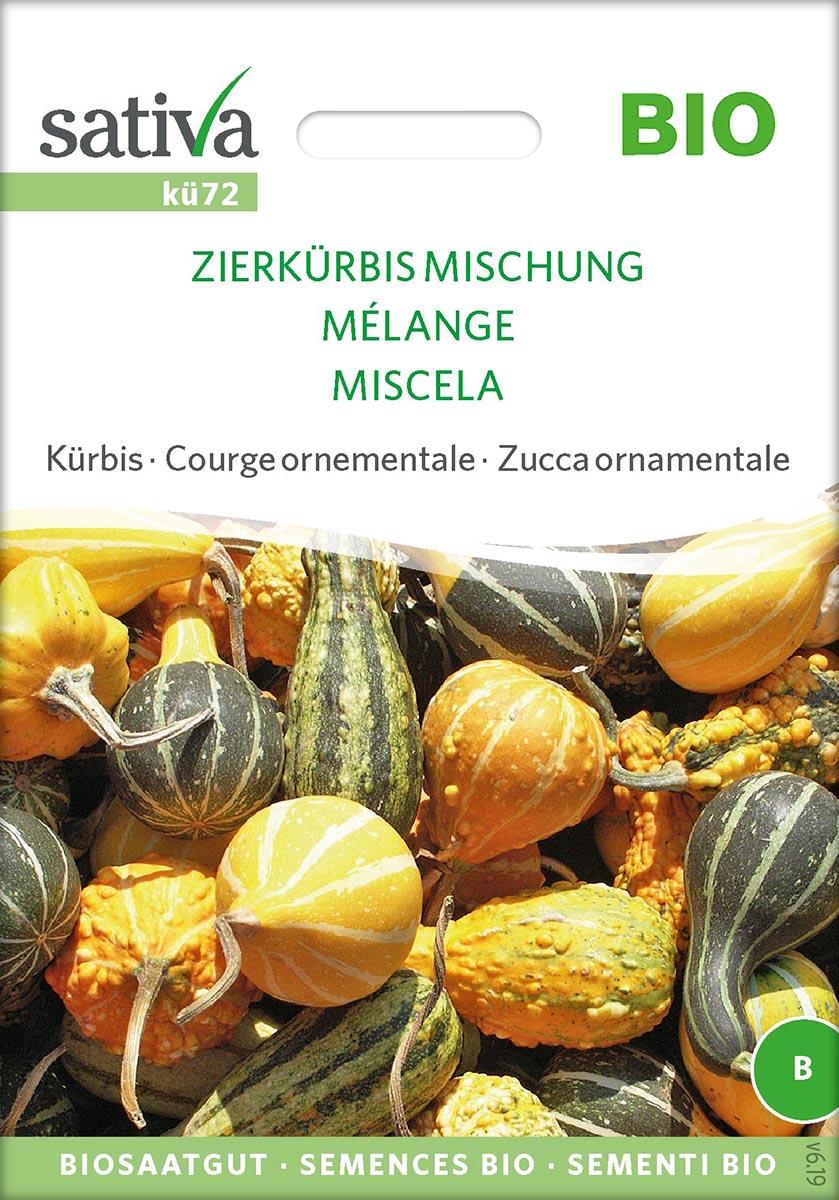 Saatgut Zierkürbis Mischung -S-