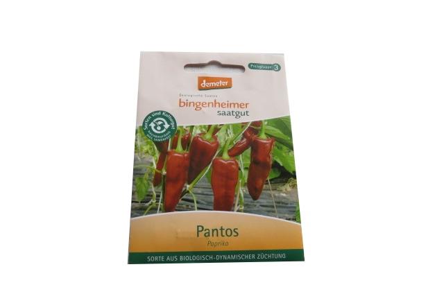 Saatgut Paprika Pantos -B-