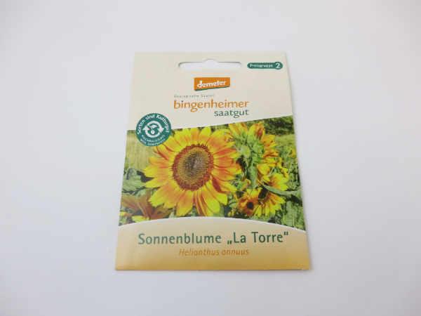 Saatgut Sonnenblume La Torre