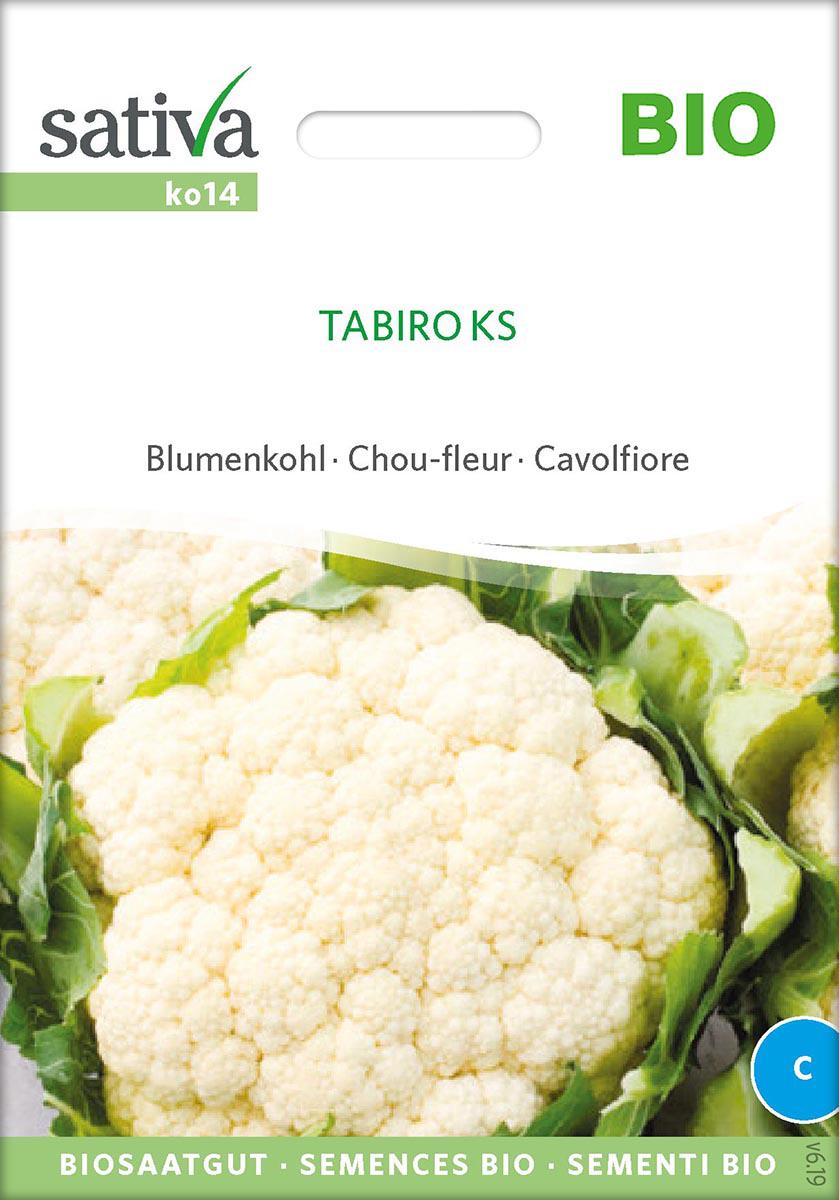 Saatgut Blumenkohl Tabiro -S-