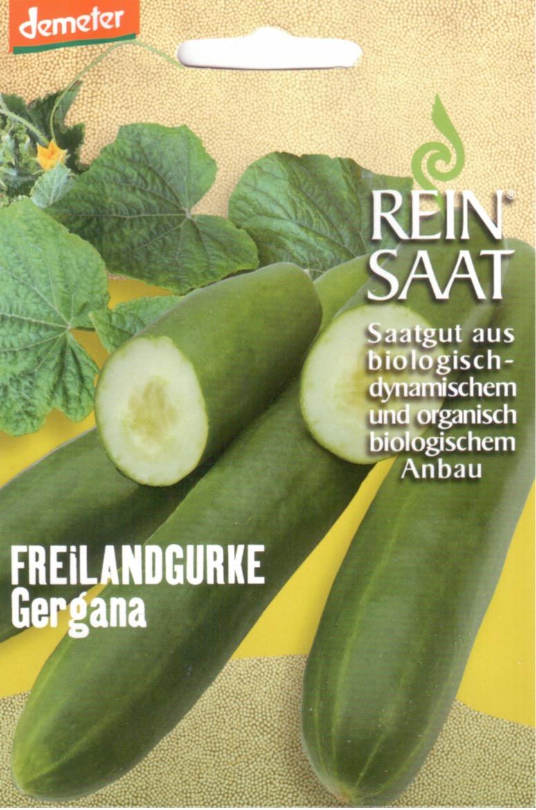 Saatgut Freilandgurke Gergana -R-
