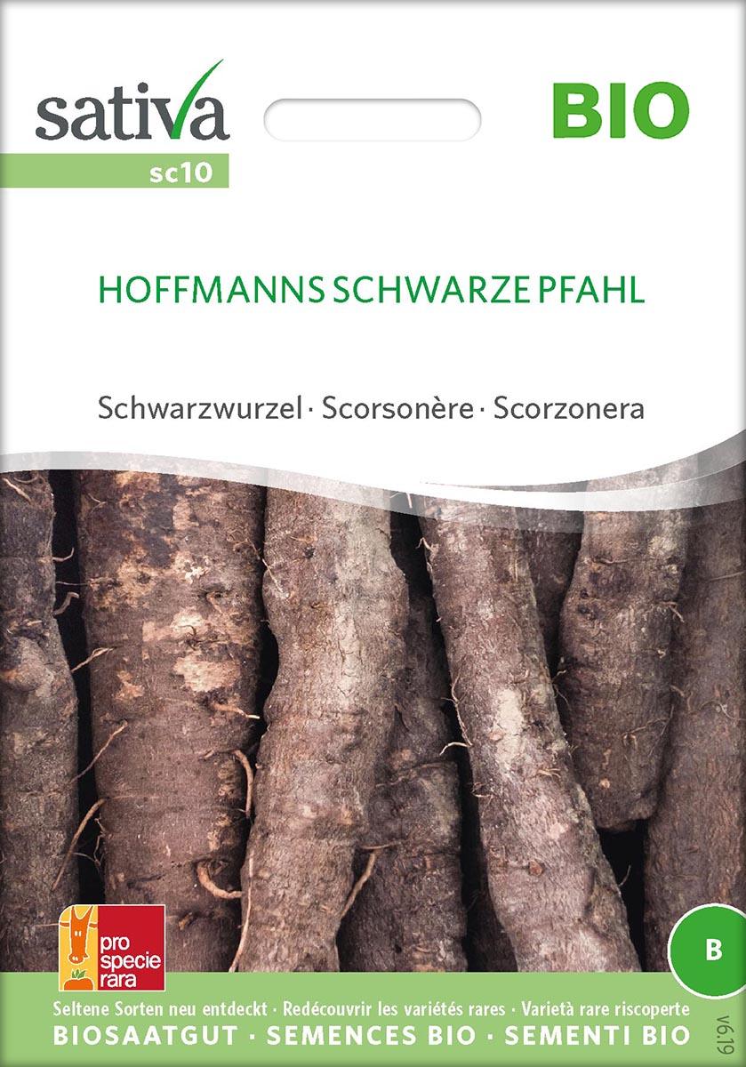 Saatgut Schwarzwurzel Hoffmanns schw. Pfahl -S-