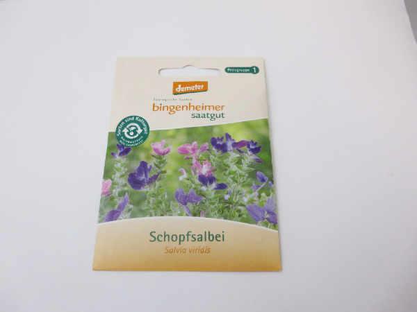 Saatgut Schopfsalbei -B-