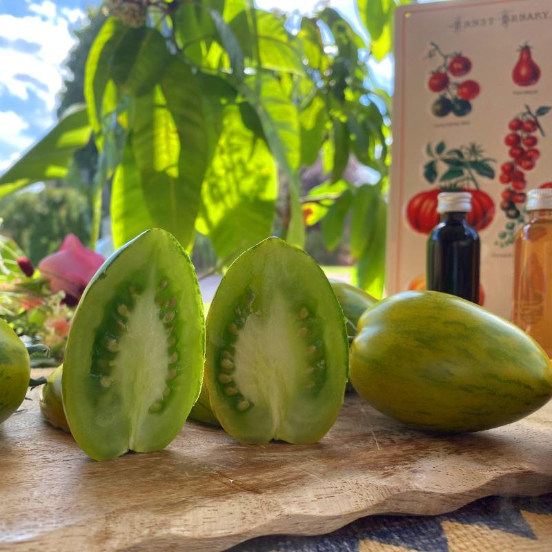 Tomatensaatgut Märchenelf