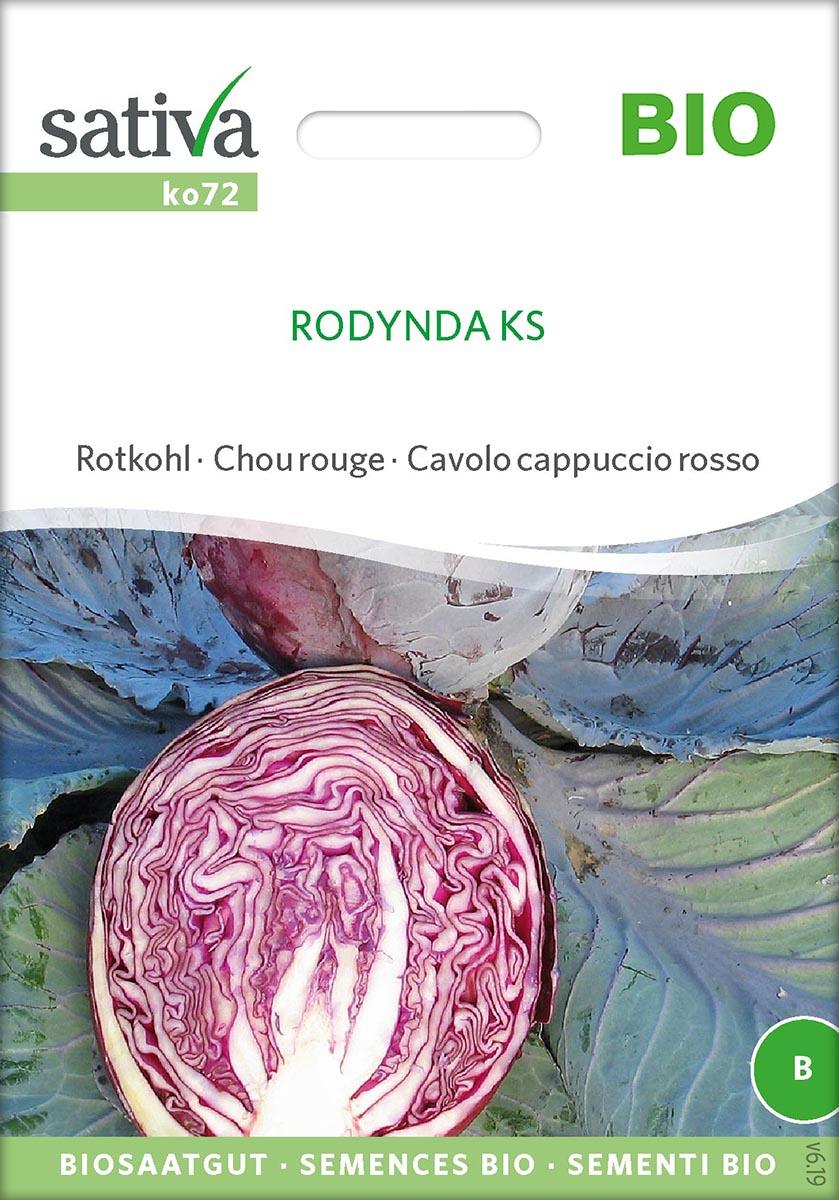 Saatgut Rotkohl Rodynda -S-