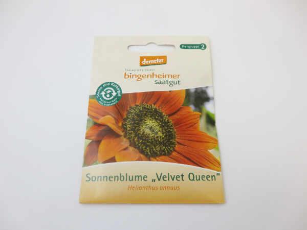 Saatgut Sonneblume Velvet Queen